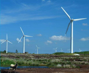 ourstory-bnm-turbines