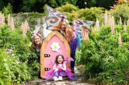 Bord na Móna, along with The Irish Fairy Door Company, have announced the return of the spectacular Fairy Festival in Lough Boora Discovery Park, Co Offaly on Saturday 22nd July.