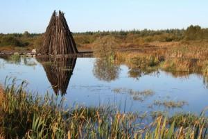 Autumn-at-Lough-Boora
