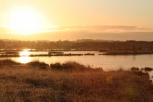 sunrise-over-Tumduff-wetlands