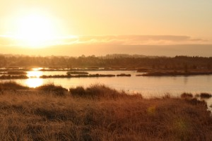 sunrise-over-Tumduff-wetlands