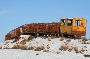 Sky Train in Snow