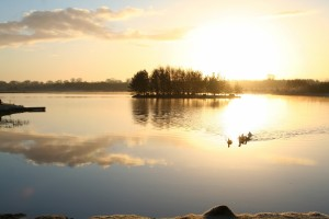 Sunrise-on-Lough-Boora