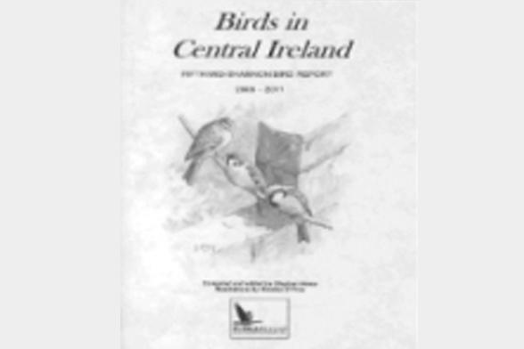 Aviation Statistics - CSO - Central Statistics Office
