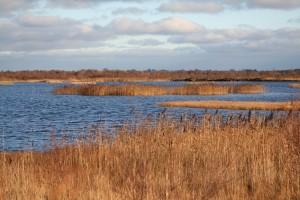 turraun-wetlands
