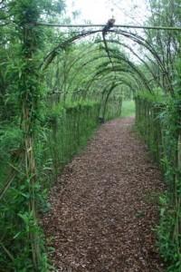 140522 Willow-Maze3