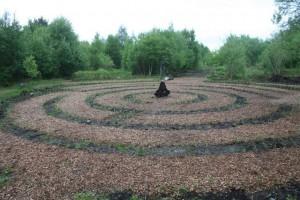 140522 Willow-Maze7