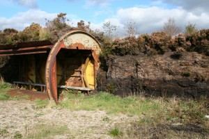 Burrow-Shelter-End