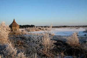 Cold-morning-at-Lough-Boora